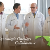 The Gynecologic Oncology Collaborative